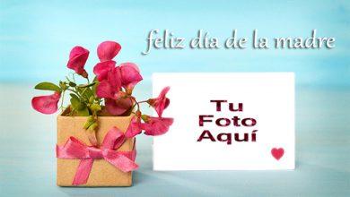 Feliz Dia De La Madre Foto Marco 390x220 - Feliz Día De La Madre Foto Marco