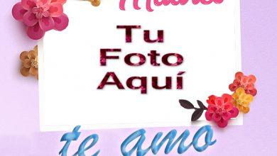 Te Amo Mama Foto Marco 390x220 - Te Amo Mama Foto Marco