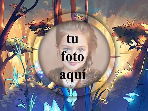 Bosque Movil Foto Marcos - Bosque Móvil Foto Marcos