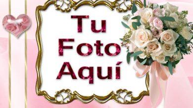 El Amor Brota Del Corazon Romantico Marcos 390x220 - El Amor Brota Del Corazón Romántico Marcos