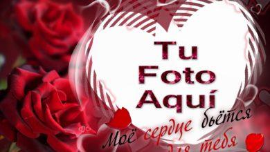 El Amor Es Una Llama En El Corazon Romantico Marcos 390x220 - El Amor Es Una Llama En El Corazón Romántico Marcos