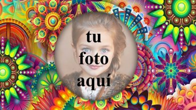Magia De Flores Movil Foto Marcos 390x220 - Magia De Flores Móvil Foto Marcos