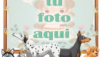 Perros lindos mascotas marcos de fotos 390x220 - Perros lindos mascotas marcos de fotos